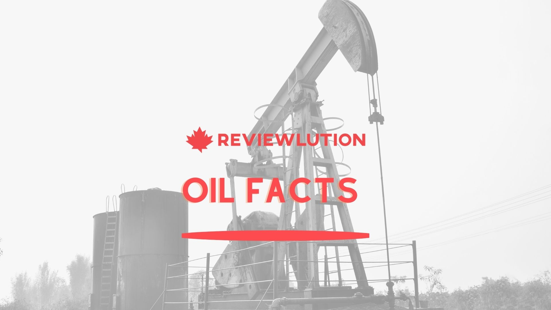 Incredible Oil Facts to Check out in 2021 [Infographic]