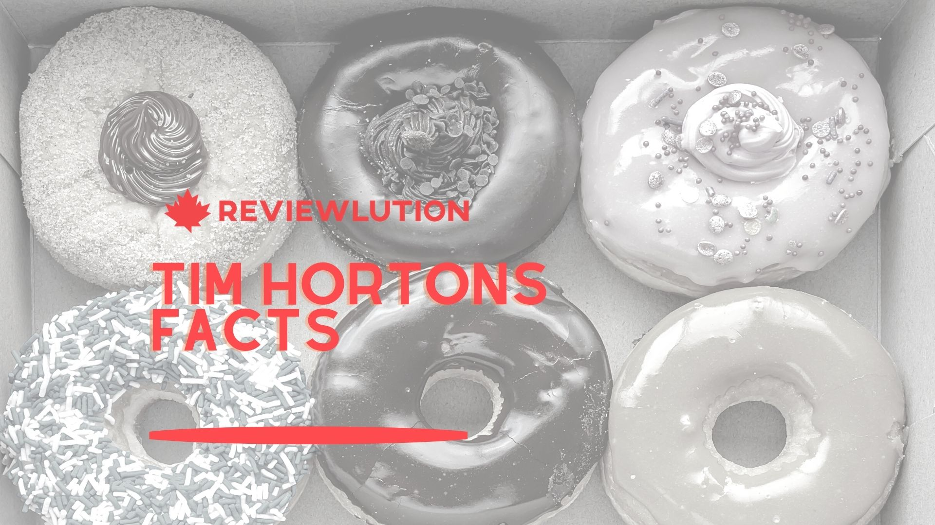 21+ Delicious Tim Hortons Facts [Collected in 2021]