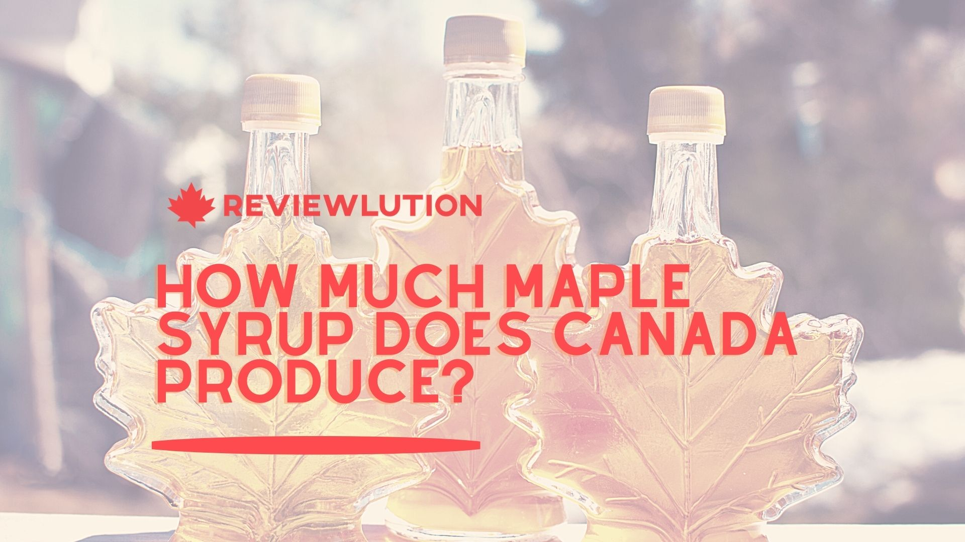 How Much Maple Syrup Does Canada Produce in 2021?