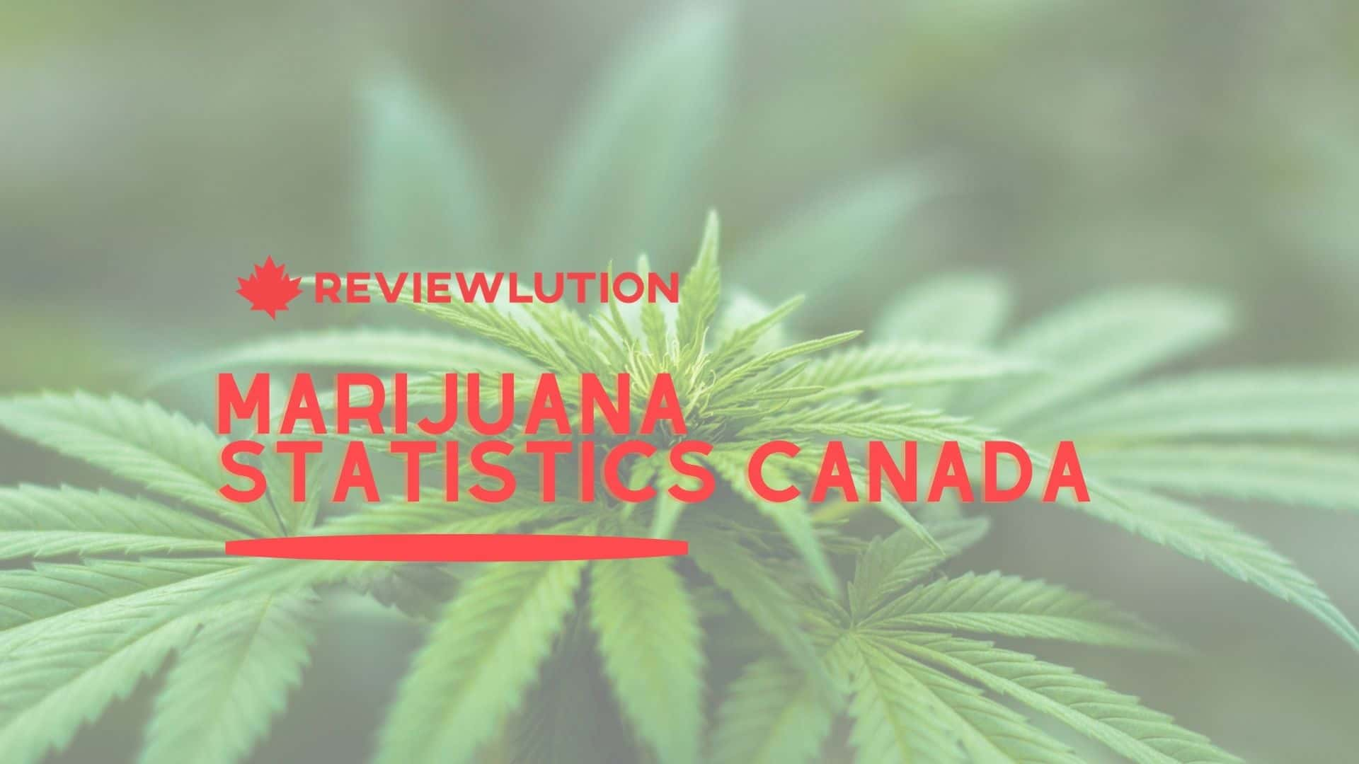 16 Eye-Opening Marijuana Statistics Canada for 2021